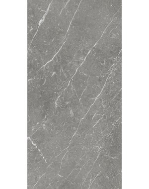 Luxury Tiles Grey Marble Effect 1200x600mm Wall and Floor Tile