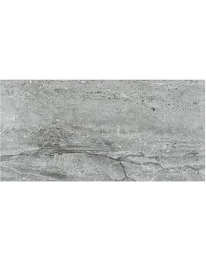 Salerno Grey 300x600mm