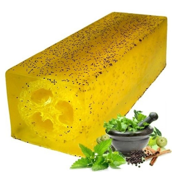 Loofah Soap Slice Peppermint & Herb Scrub