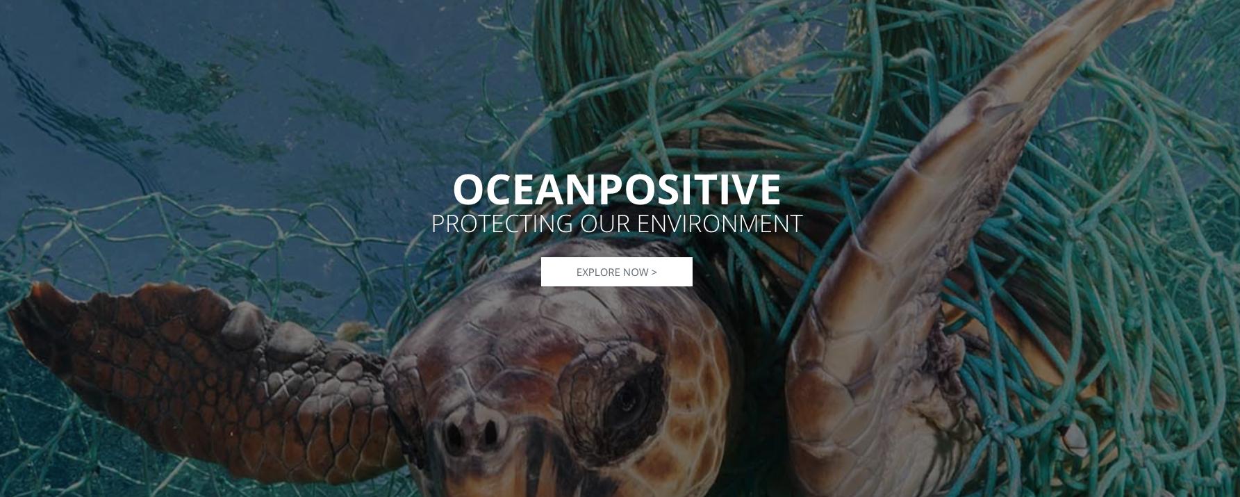 FE Ocean Positive