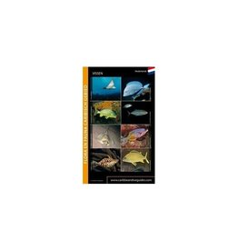 Vissenkaart Caribisch gebied