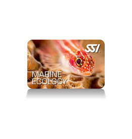 SSI SSI Marine Ecology Specialty
