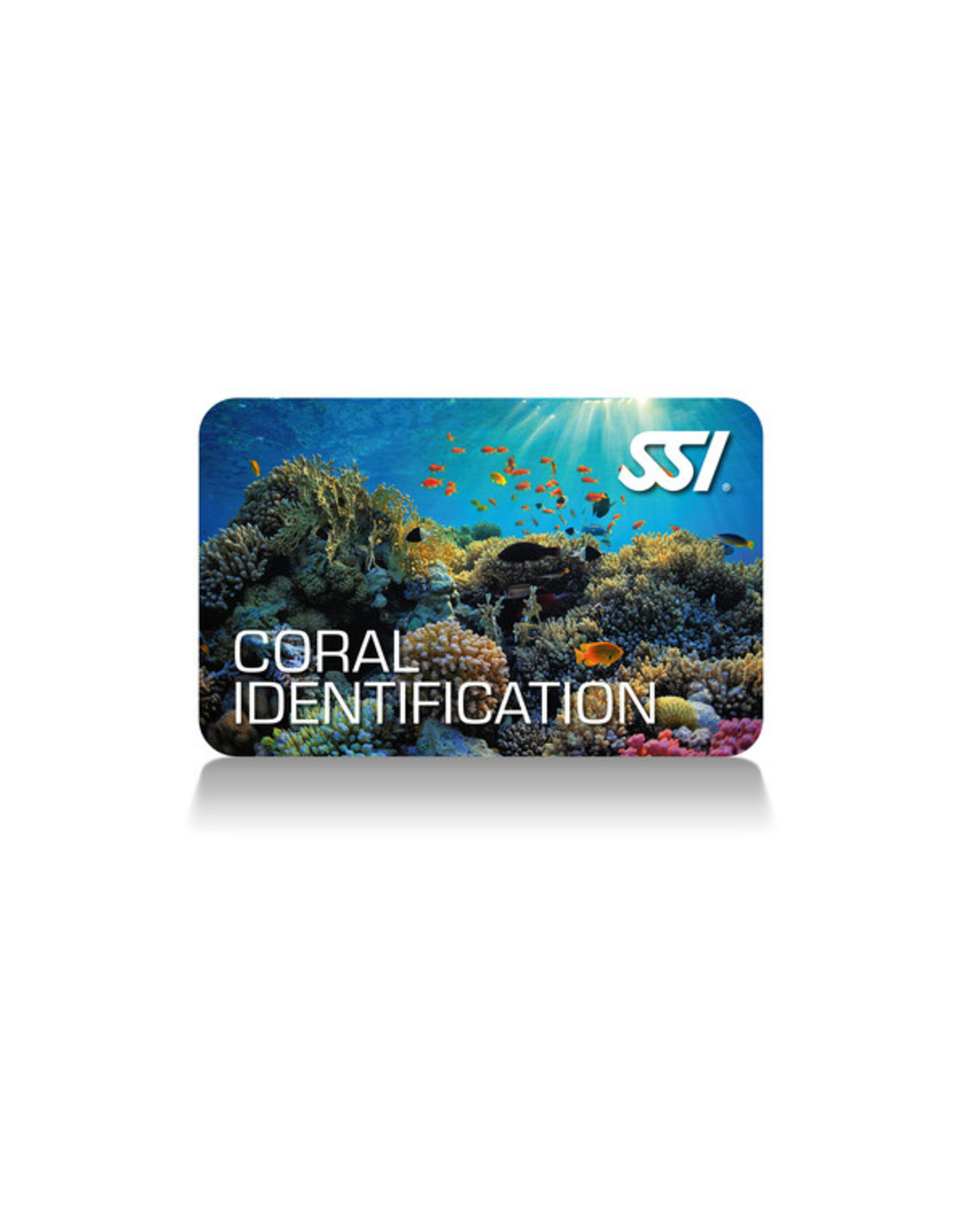 SSI SSI Coral Identification Specialty