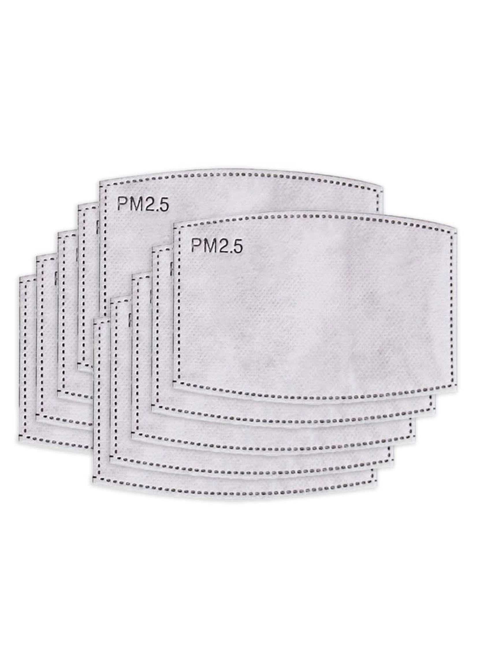 Fourth Element Fourth Element 10-Replacement Filters for mask
