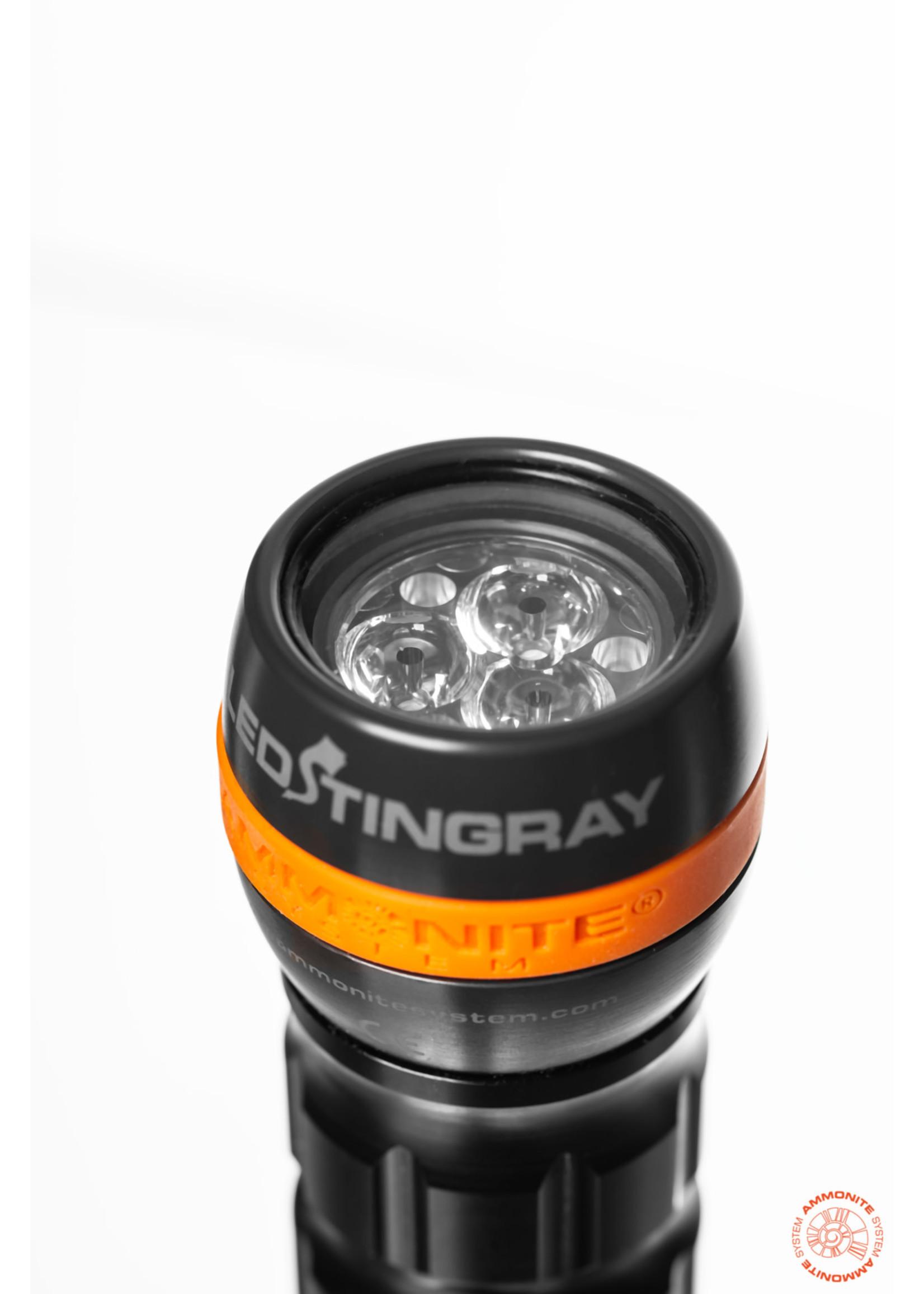 Ammonite Ammonite LED Stingray