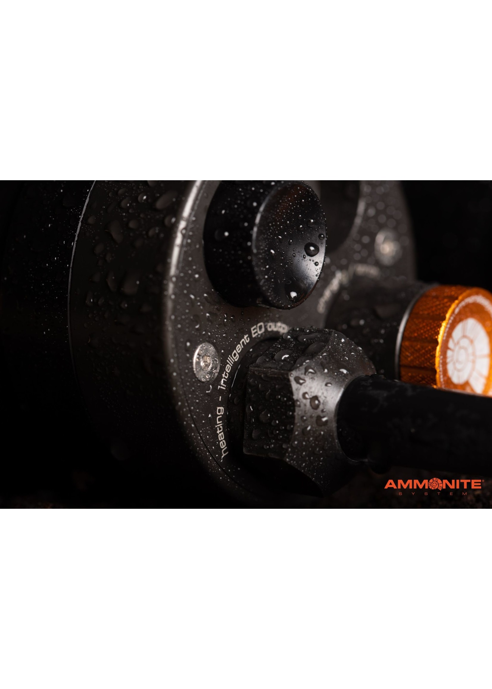 Ammonite Ammonite Accu Thermo - diverse varianten