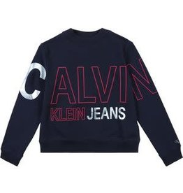 Calvin Klein Logo Foil Boxy Fit Sweatshirt