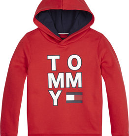 Tommy Hilfiger Multi Aw Graphic Hoodie, XA9