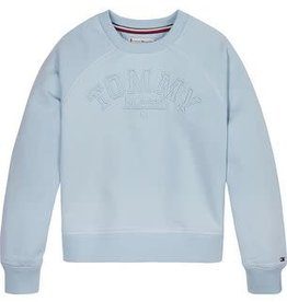 Tommy Hilfiger Tonal Embroidered Graphic Crew