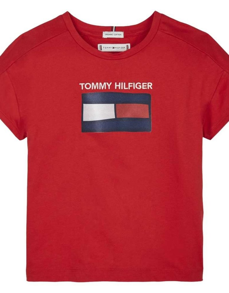 Tommy Hilfiger Fun Graphic Flag Tee S/S