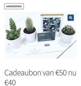Bold. Cadeaubon € 50,-  actie