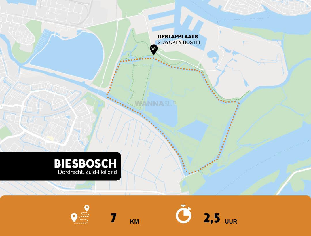 Sup route Biesbosch, Dordrecht - Zuid-Holland - WANNAsup