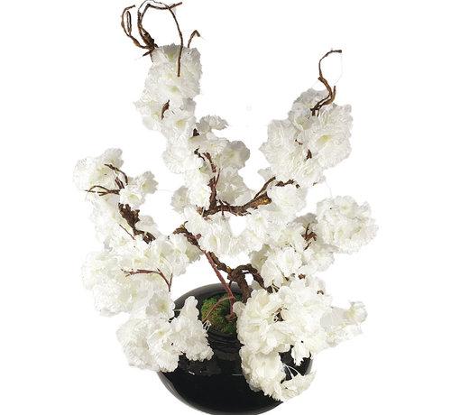 L&M Bloemen - White Blossom Black Glas