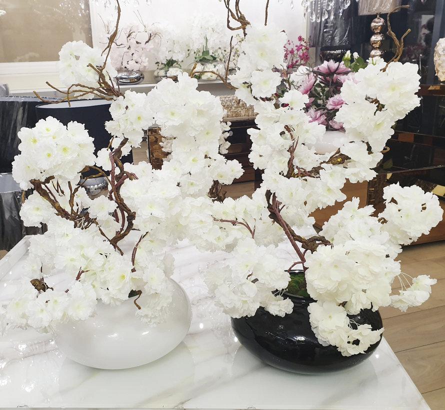 Bloemen - White Blossom White Glas