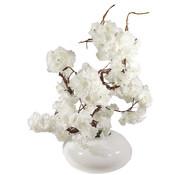 L&M Bloemen - White Blossom White Glas
