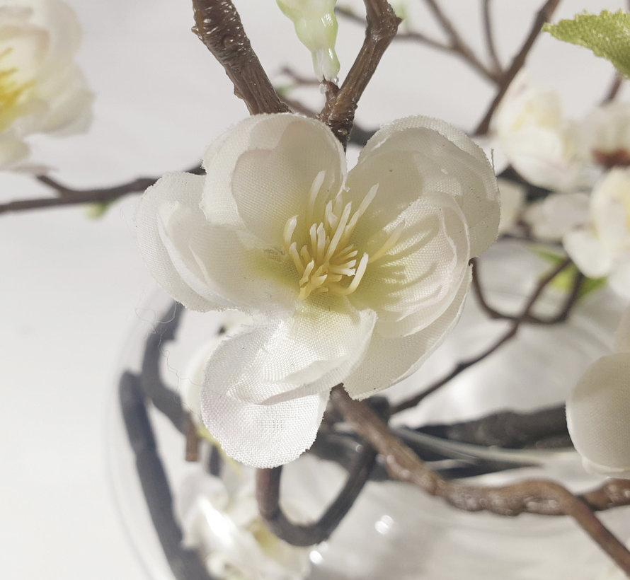 Bloemen - Youthful Peony's White