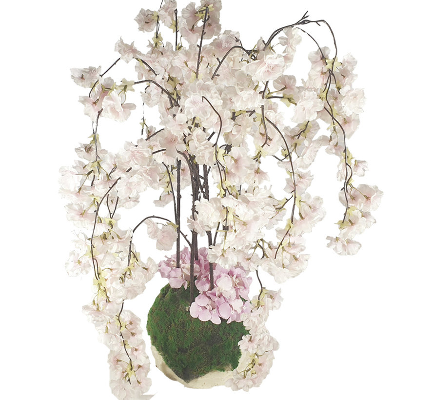 Bloemen - Radiant Blossom