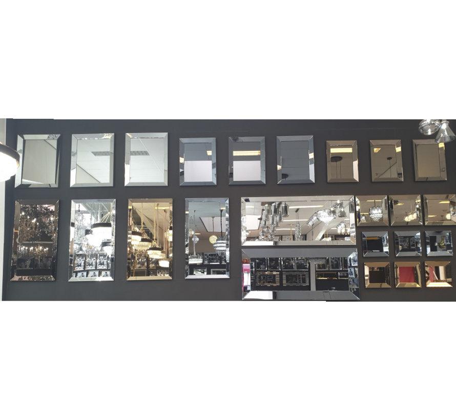 Spiegel - Zilver (in 4 kleuren 130x70x4 cm)