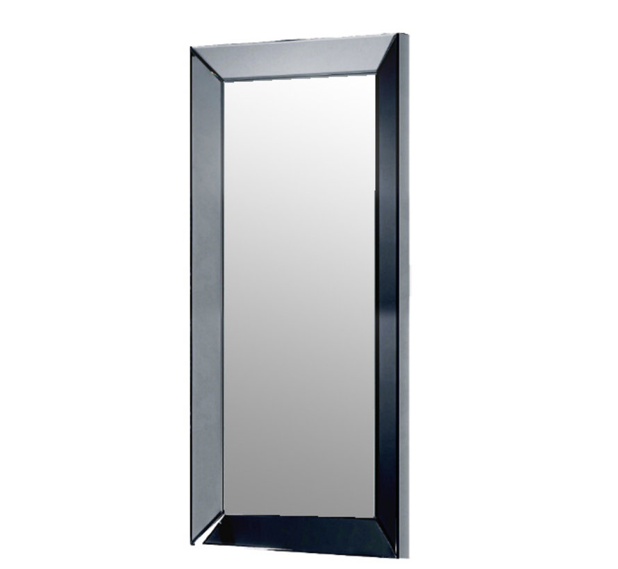 Spiegel Antraciet 100 x 200 cm