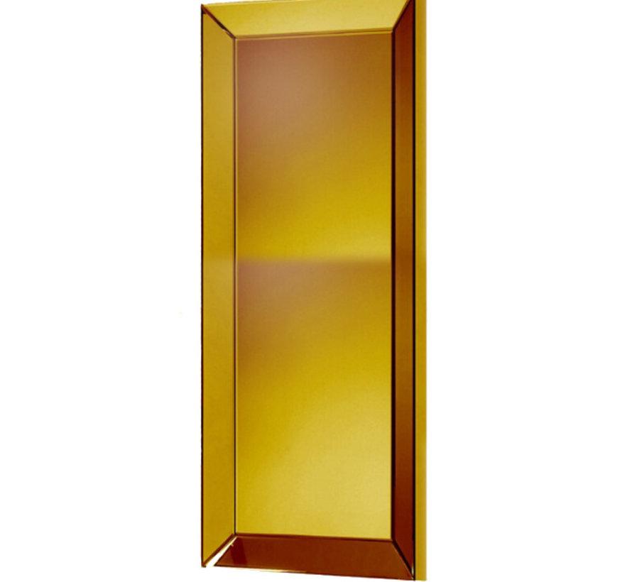 Spiegel Goud 100 x 200 cm