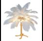 Pre-Order Struisvogel Tafellamp OP=OP