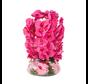 Kunstplant Orchidee Roze (S)- in pot - Transparant