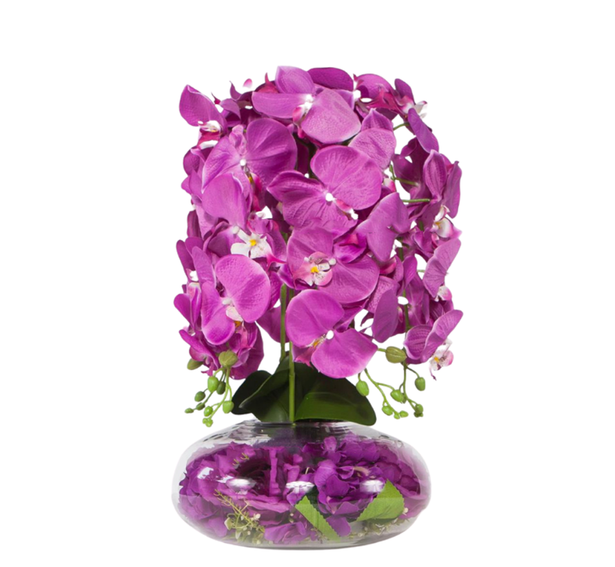 Kunstplant Orchidee Paars (S)- in pot - Transparant