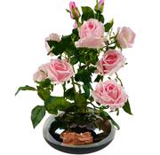 L&M Kunstrozen - Roze - in glazen pot getint