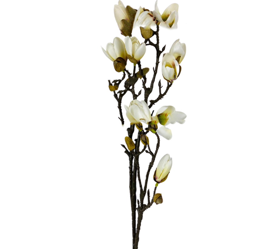 Magnolia Kunsttak - Wit/Geel