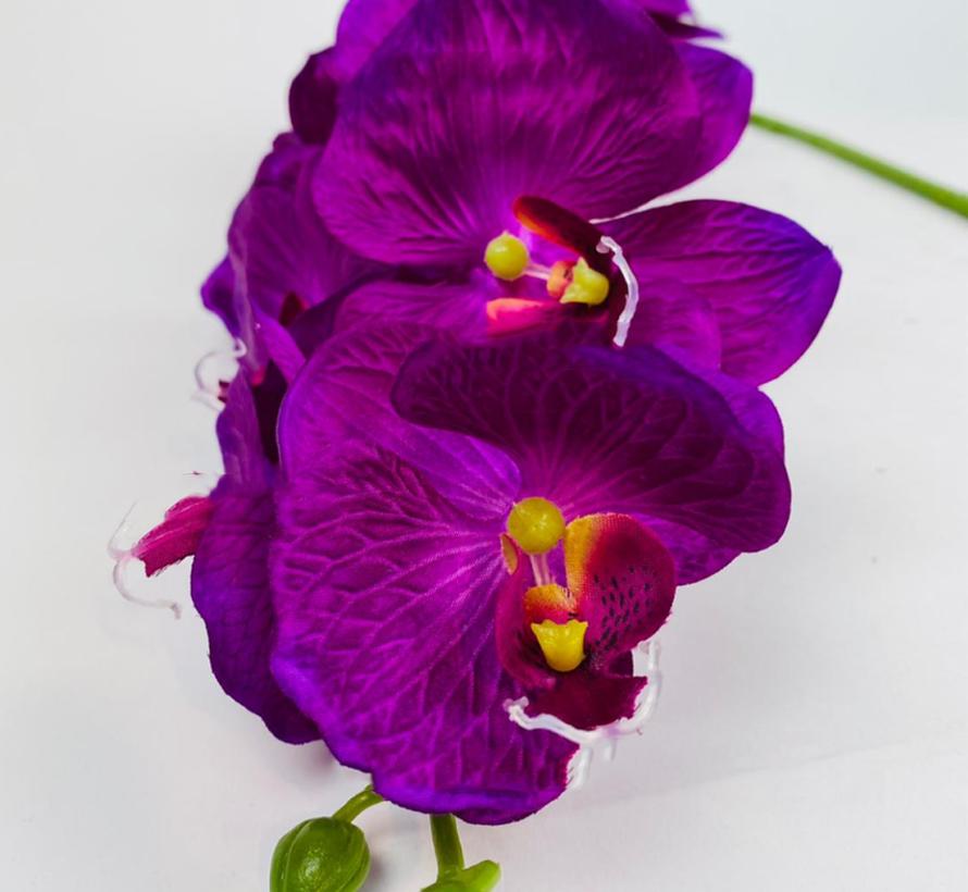 Kunstorchidee - Tak - Violet - Phalaenopsis