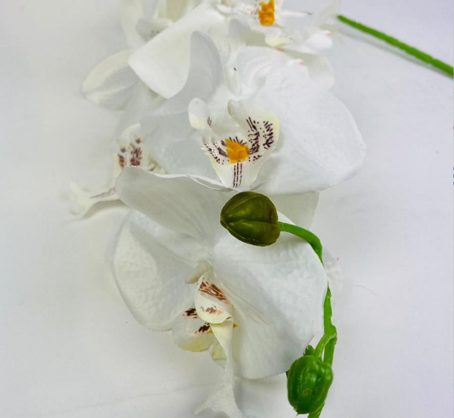 Kunstorchidee - Tak - Wit - Phalaenopsis