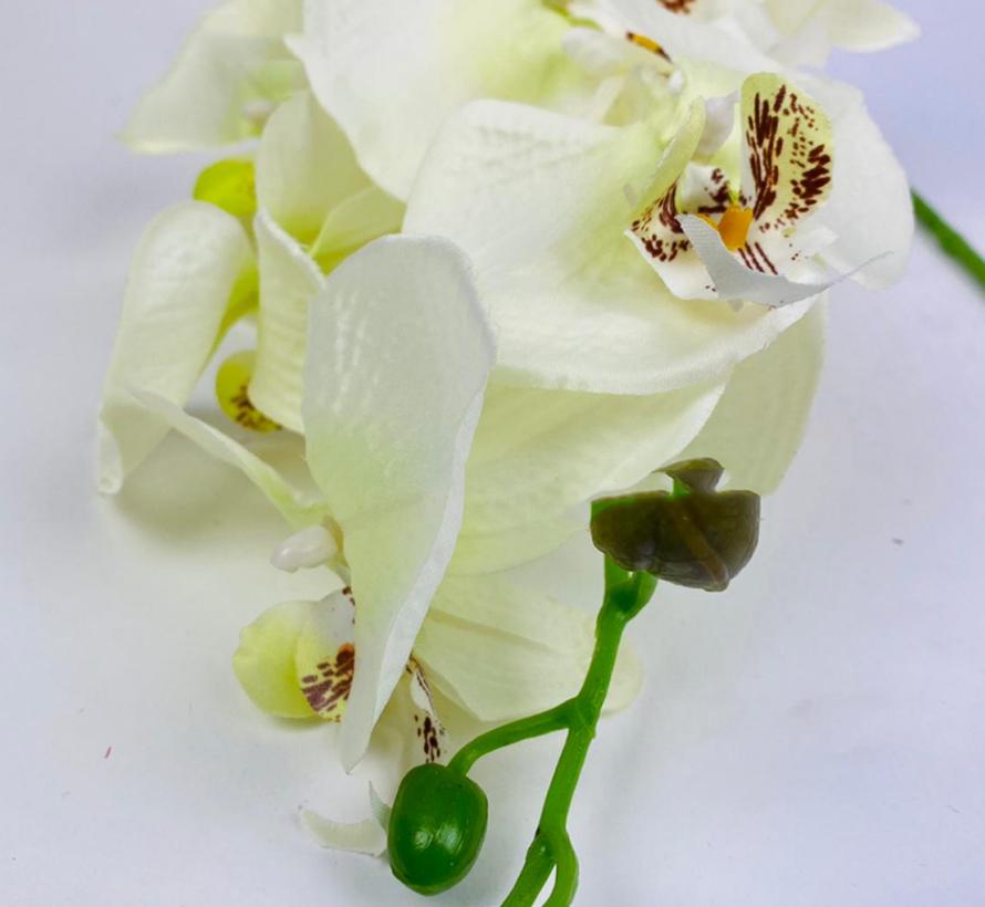 Kunstorchidee - Tak - Wit Groen - Phalaenopsis