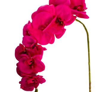 L&M Kunstorchidee - Tak - Roze - Phalaenopsis