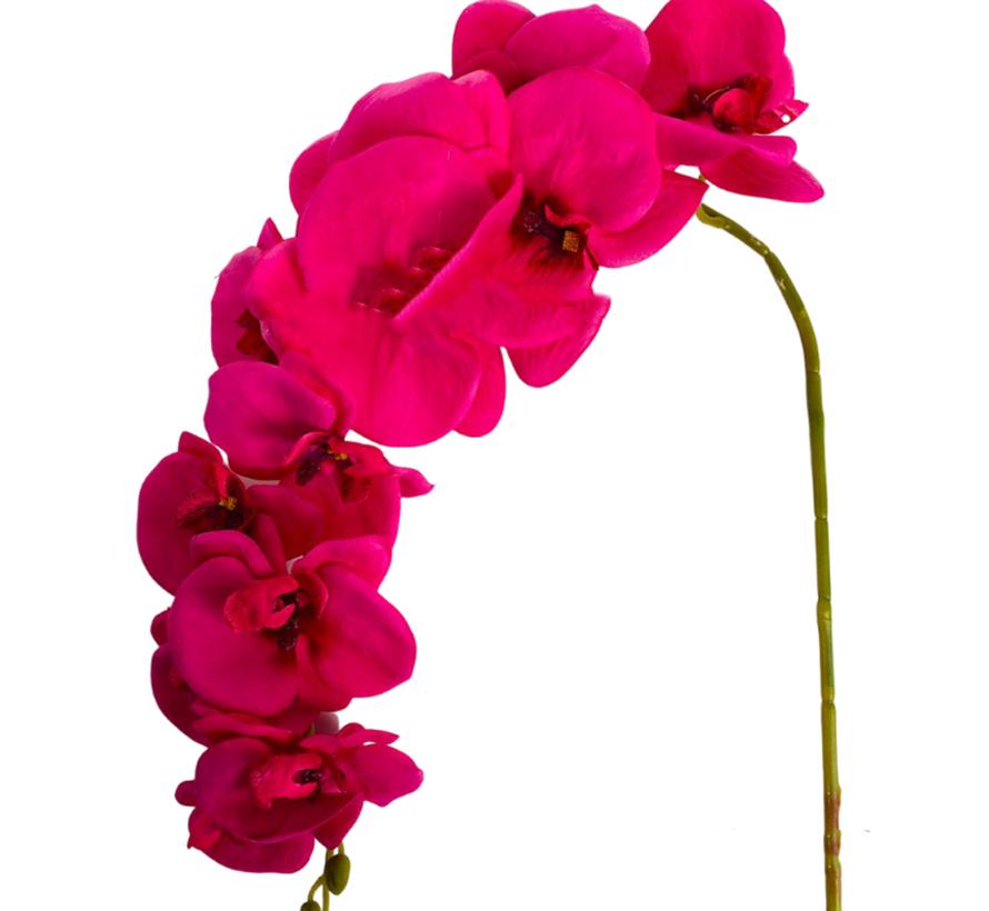 Kunstorchidee - Tak - Roze - Phalaenopsis