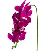 L&M Kunstorchidee - Tak - Paars - Phalaenopsis