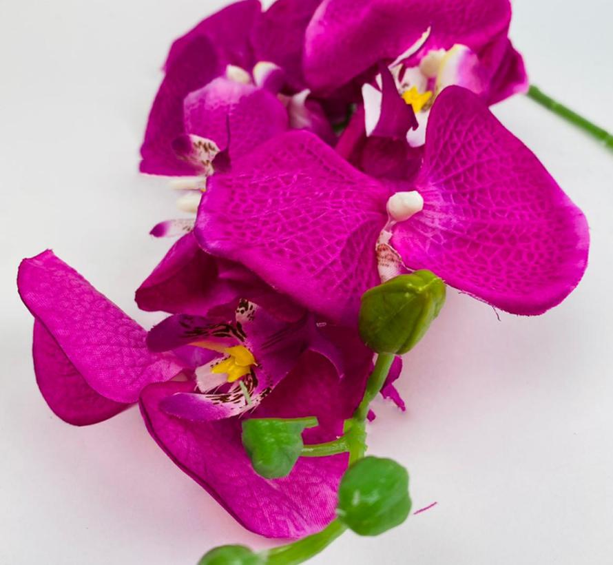 Kunstorchidee - Tak - Paars - Phalaenopsis