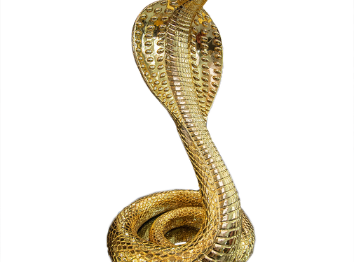 Eric Kuster Style Cobra goud
