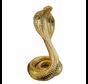 Cobra goud