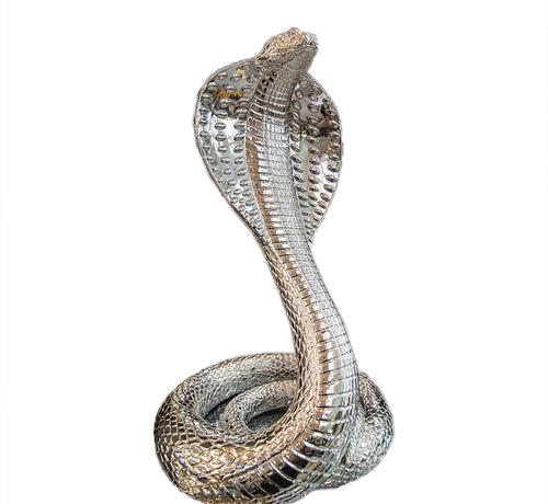 Eric Kuster Style Cobra Zilver