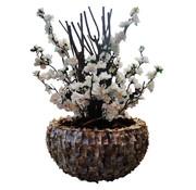 Eric Kuster Style Schelpenvaas - Savannah - White Bloesem