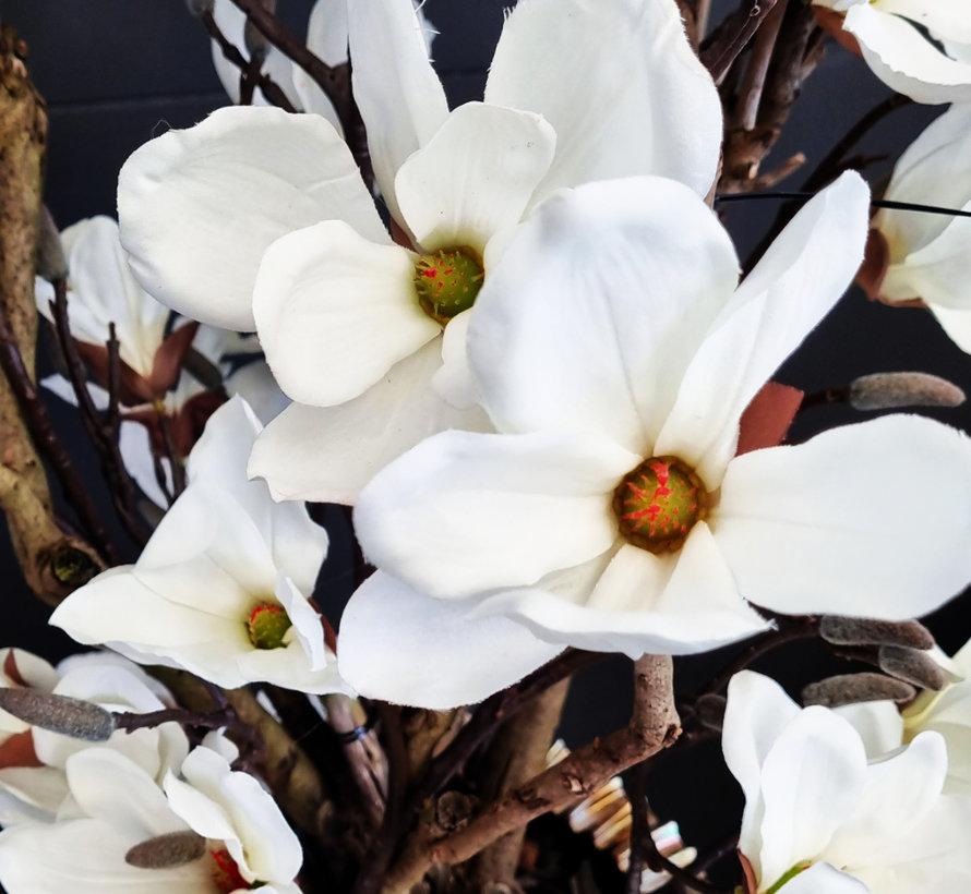 Schelpenvaas - Nova - Magnolia Blanca