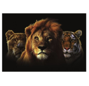 L&M Collections Africa Kings  Glasschilderij 160x110