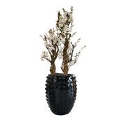 Eric Kuster Style Schelpenvaas - Rosetta - White Blossom