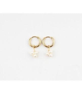 'Zara' Earrings Fresh Water Pearls & Gold - Stainless Steel