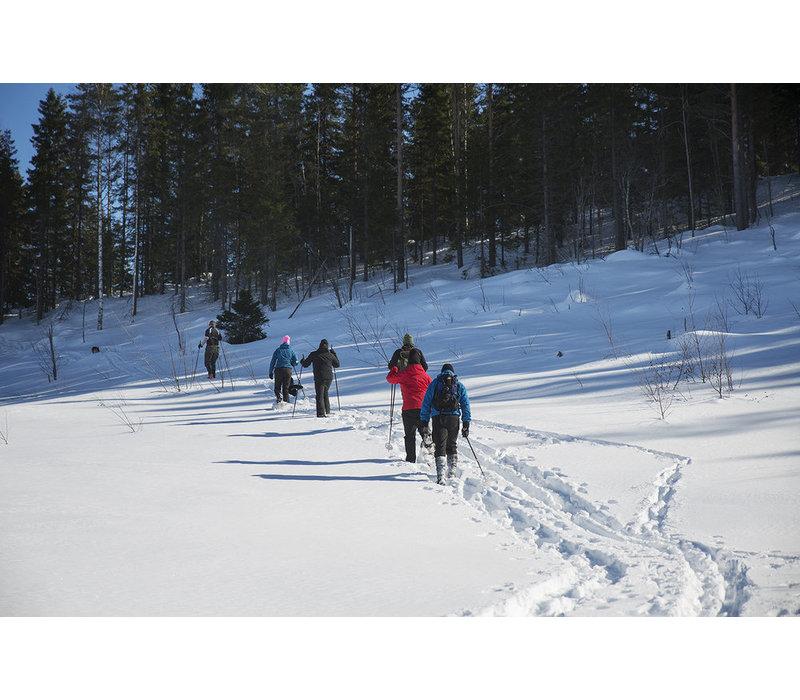 Arctic Expedition - een serieus winteravontuur