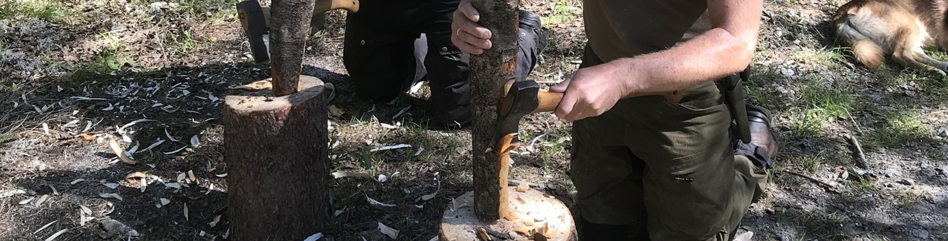 Bushcraft Basics - Learn the most important wilderness skills