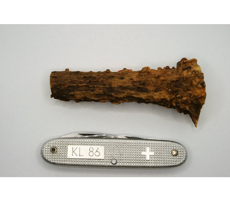 Piece of Antler 9,5 cm