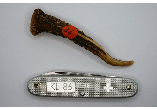 Bushpappa Piece of Roe deer Antler 9 cm