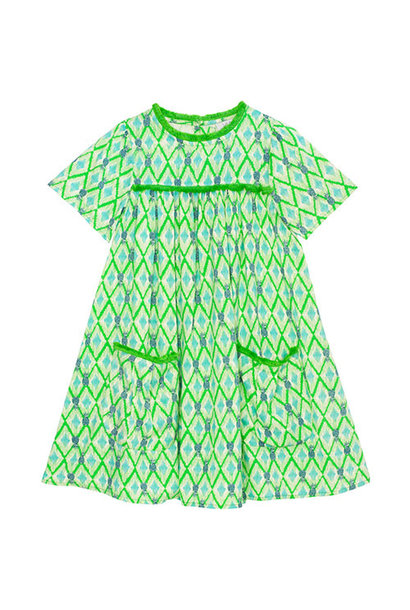 Wild & Gorgeous Paradise Dress Green (Jurk)
