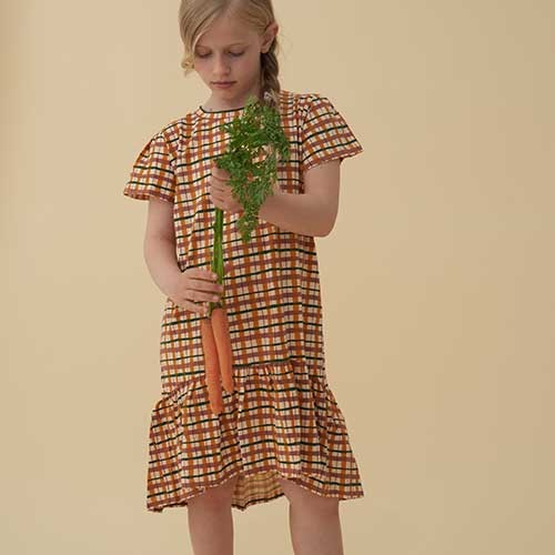 Soft Gallery Fenella Dress Winter Wheat AOP Check (Jurk)-6